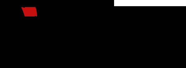 Logo Leon Monte Le Son Annecy, Lyon, Grenoble, AIx Les Bains, Chambéry et Geneve