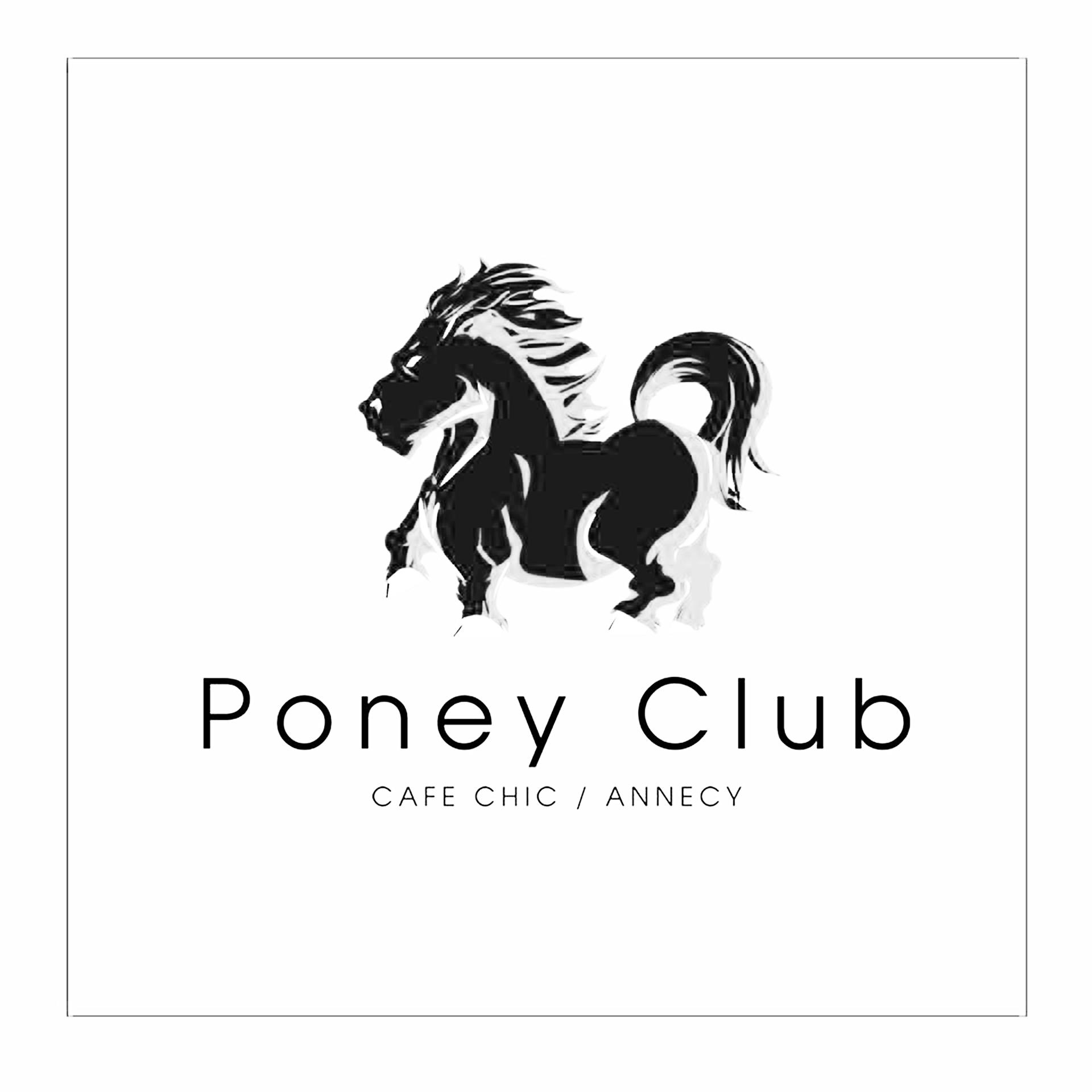 Le poney Club à Annecy avec Leon Monte le Son DJ