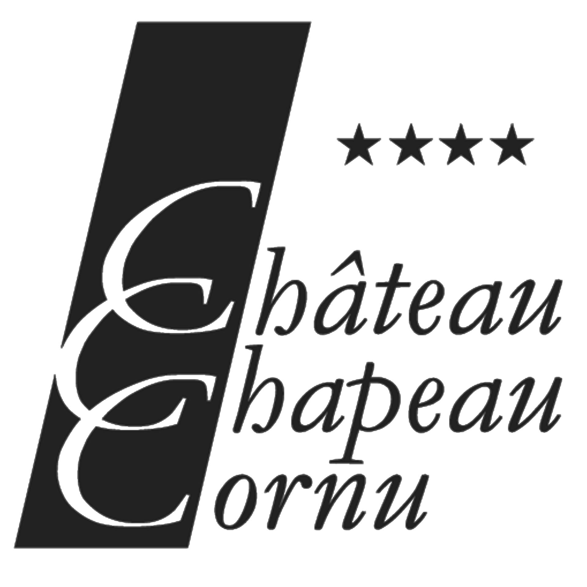 Mariage au Château Chapeau Cornu à Vignieu près de Lyon et Grenoble avec Leon Monte Le Son